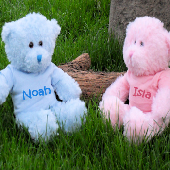 Blue Teddy Bear Personalised Bear with Named T-Shirt