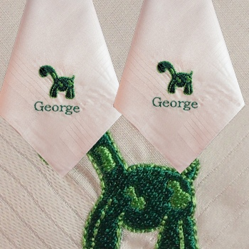 Dinosaur Hankie Personalised Childrens Handkerchief