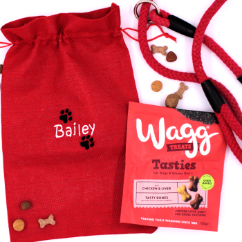 Doggy Gift Bag Personalised Dog Treats Bag