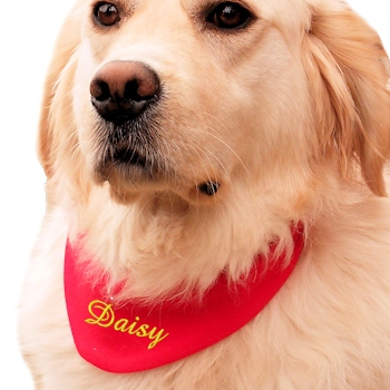 Dog Bandanna Personalised Red Pet Scarf