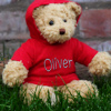 Personalised Teddy Bear Hoodie Bear