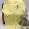 Bunny Rabbit Embroidery Babygrow