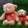 Brown Teddy with Personalised Red Bow