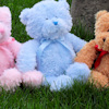 Traditional Teddy Personalised with Blue Ribbon