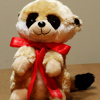 Meerkat Toy Personalised Baby Meerkat