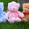 Teddy with Personalised Pink Ribbon