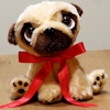 Pug Dog Toy Personalised Gift Pug