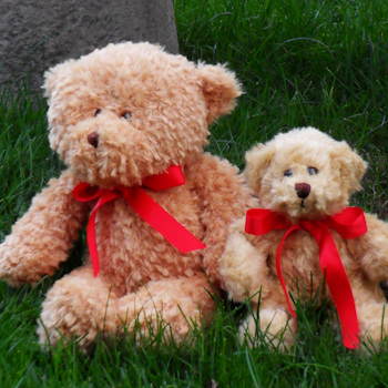 Personalised Teddy Bear Brown Teddy with Personalised Red Bow