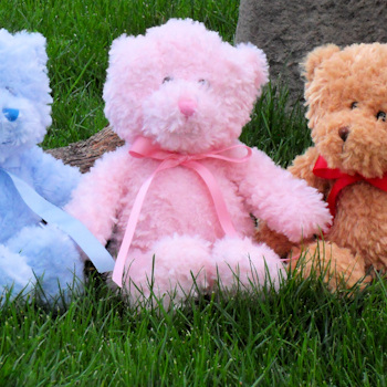 Personalised Bear Traditional Teddy with Personalised Pink Ribbon