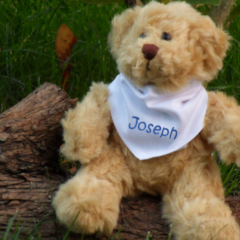 Personalised Baby Bear Little Teddy with Scarf