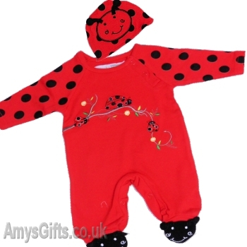 Ladybird Onesie and Hat